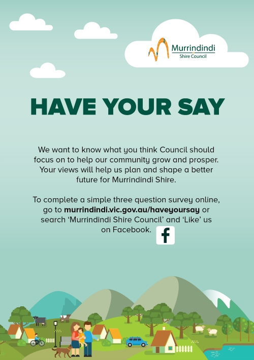 Have Your Say Flyer