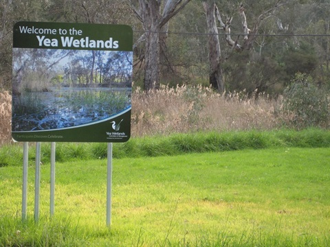 Yea Wetlands.jpg