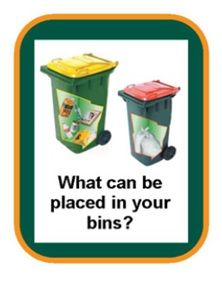 What can be placed in your bins?